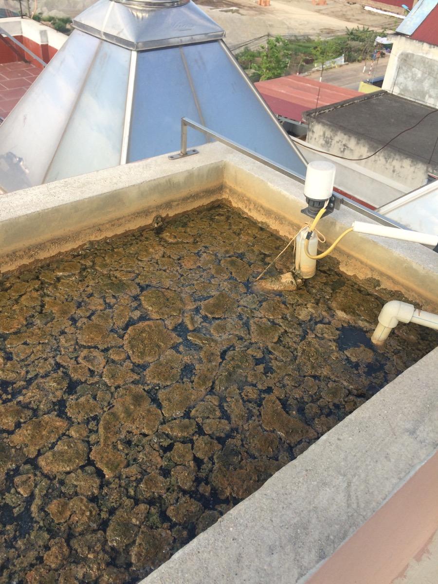 Các dạng nước bị ô nhiễm và phương pháp xử lý