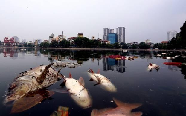 Hà Nội: Giải pháp nào cho nguồn nước sinh hoạt bị ô nhiễm ?