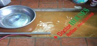 Dùng tro bếp xử lý nước giếng khoan có an toàn không